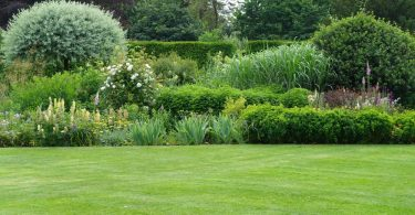 scenic english garden with lush green lawn
