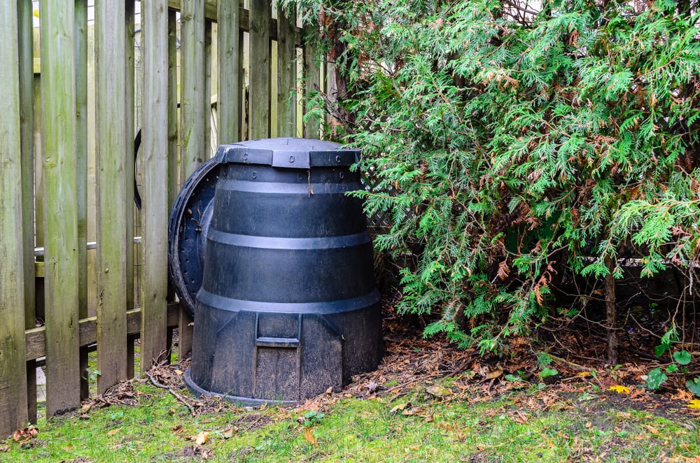 black compost bin next to a hedge and fencing