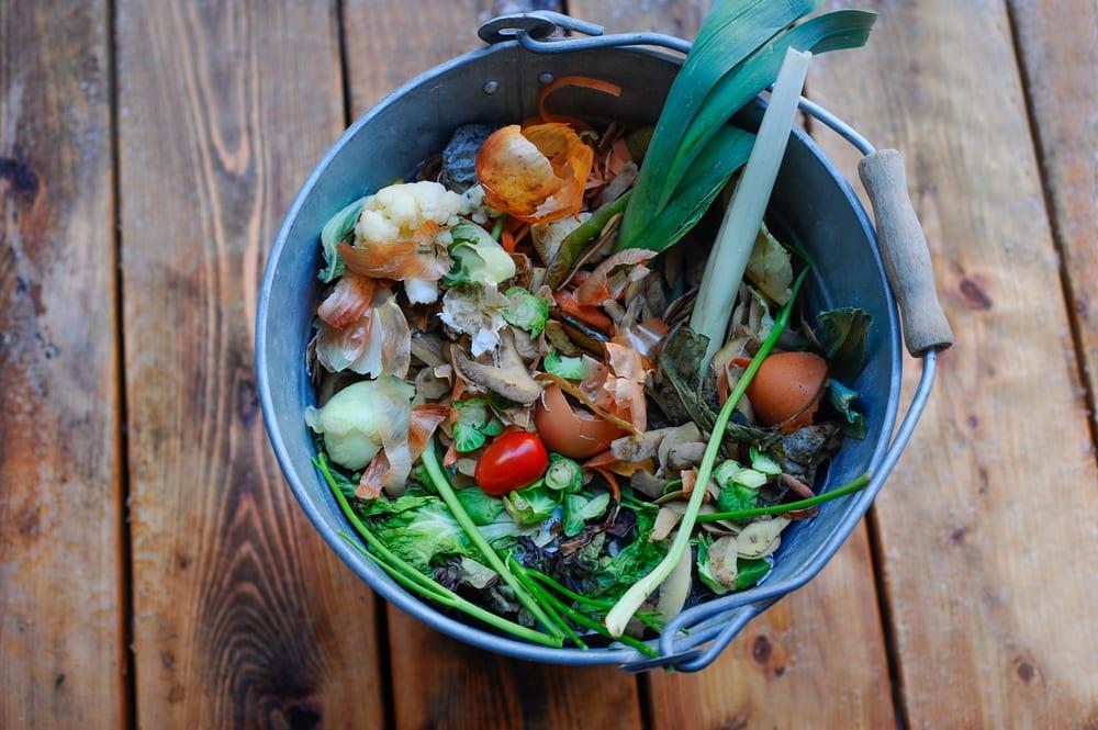 metal bucket full of organic waste